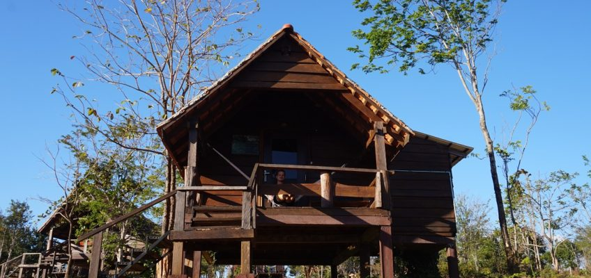 cabin house at the nature lodge in mondulkiri