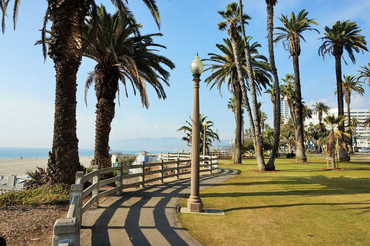 View Palisades Park Santa Monica