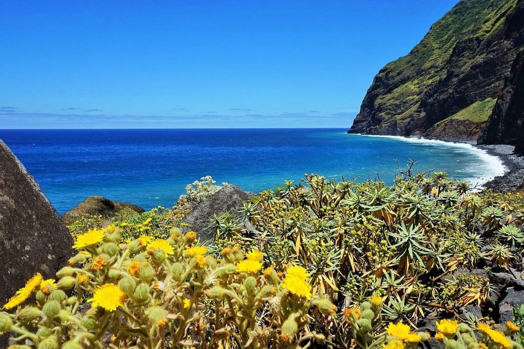 madeira island views