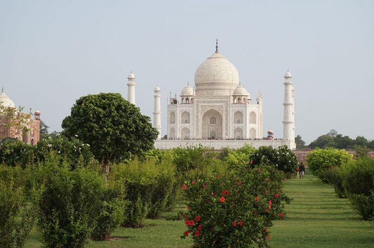 Mehtab Bagh Gardens view of the Taj Mahal