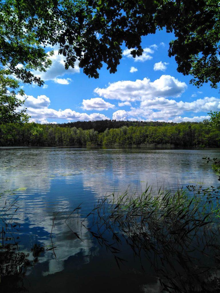 berlin day trip märkische schweiz lake